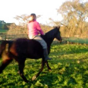bubbles bareback and bridleless trotting hehe