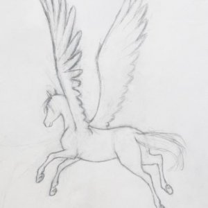 A pegasus I drew with no reference on a long road trip.  It's definitely my best for having no reference.