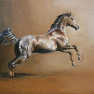An oil painting of Baquito, owned by Breathless-dk http://aomori.deviantart.com/favourites/4432042#/d2qiolj