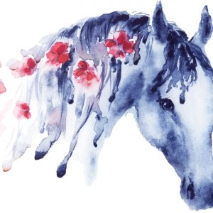 My favorite horse drawing. (I didnt draw this but love it!)