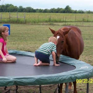 Our Eb is a babysitter whether under saddle or just playing outside with the kids.