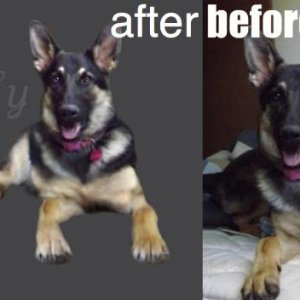 Before/After of Holly