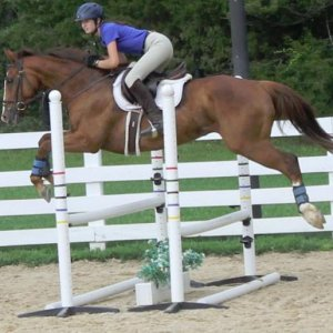 Jumping Lesson - 6-6-12