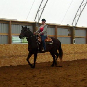 me and wizard doing some dressage and sme circles