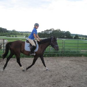 her first time trotting undersaddle =]