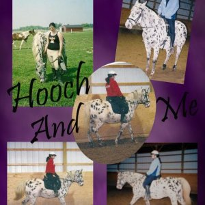 frist horse i rode hooch rest in peace old boy